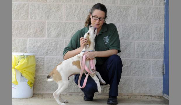 Augusta Animal Services-PM Shift