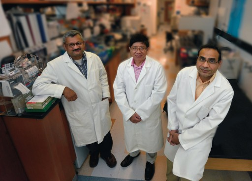 Drs. Sharad Purohit, Ashok Sharma and Jin Xiong-She