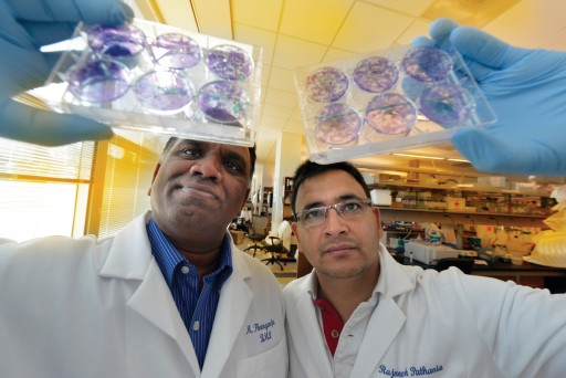 Drs. Muthusamy Thangaraju and Rajneesh Pathania