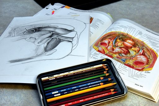 medical illustration book and colored pencils