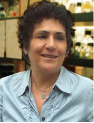Nahid Mavechi, PhD