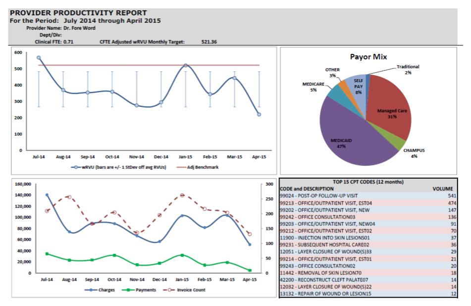 Provider Productivity Report