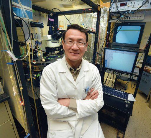 Dr. Lin Mei