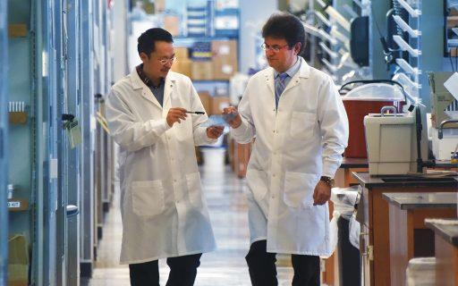 Drs. Zheng Dong and Anatolij Horuzsko.